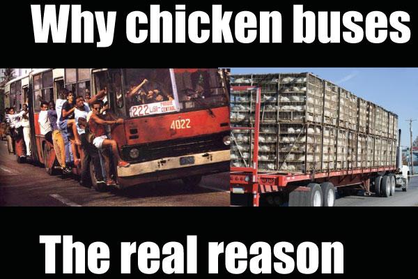 Chicken-Buses-Nicaragua