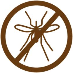 zika-nicaragua